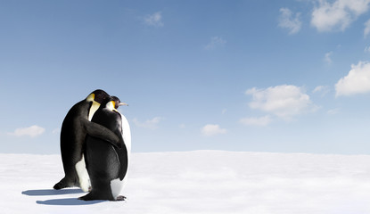 Photo sur Toile Pingouin Penguin Love