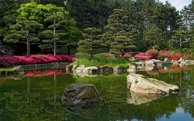 peaceful japanese garden 3