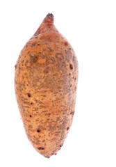Sweet Potato Isolated