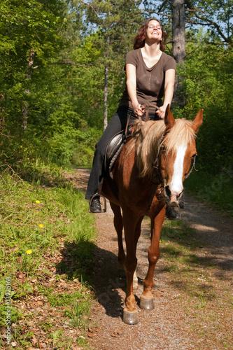 Pferdefick