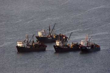 Group of trawlers in the ocean