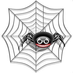 Ragno su Ragnatela-Spider on Web-Araignée sur Toile