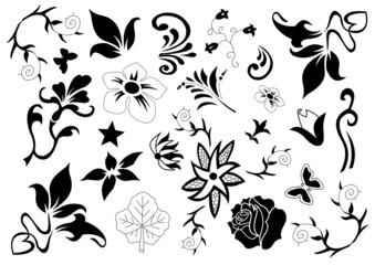 Florale Muster und Designs