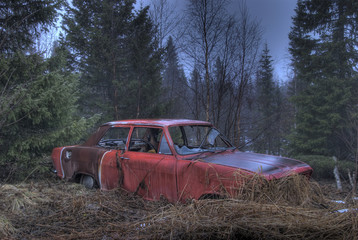 Wrecked car in the forest