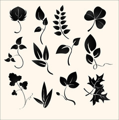 set of design plants silhouettes