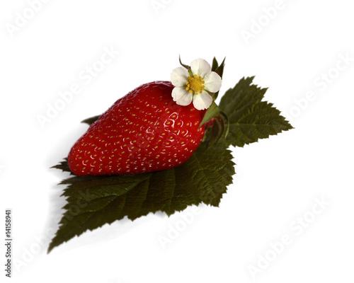 fraise et fleur de fraisier photo libre de droits sur la banque d 39 images image. Black Bedroom Furniture Sets. Home Design Ideas