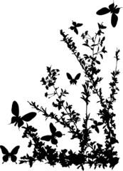 corner with cherry tree flowers