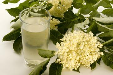 hausgemachter Fliederbeerblueten Sirup in einem Glas