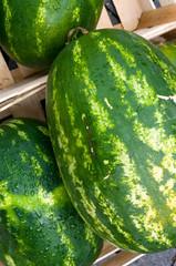 Wassermelonen auf dem Markt
