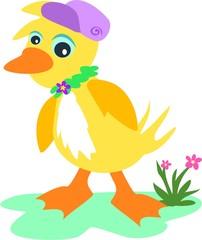 Hip Hop Duck
