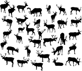 thirty four deer silhouettes