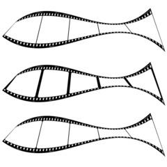 photo film strip fish