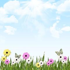Sunny Garden Flowers