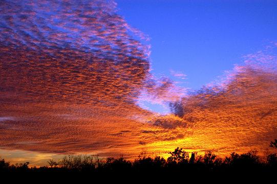 Sunset in Louisiana