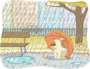 Tuinposter Honden rainy day