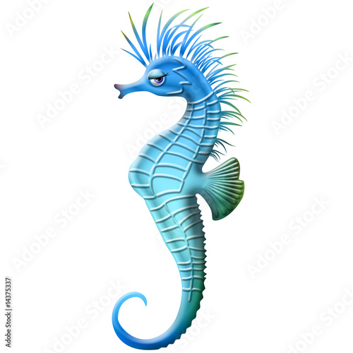 Cavalluccio marino seahorse ippocampe cartoon immagini e for Immagini cavalluccio marino
