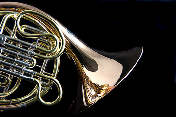 French Horn Isolated on Back Background