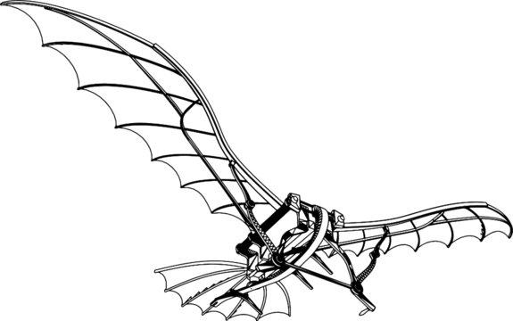 Flying Machine Leonardo da Vinci Antique Hang Glider Vector 01