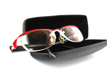 glasses in the case