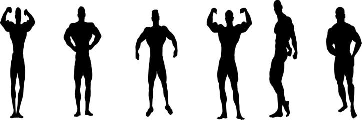 vector bodybuillding