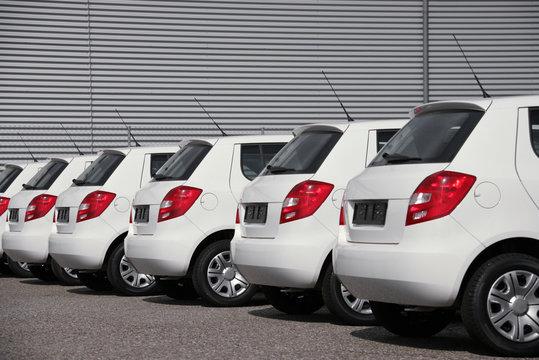 white cars fleet