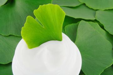 Obraz Gingko biloba day cream - fototapety do salonu