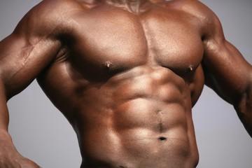 le muscle....