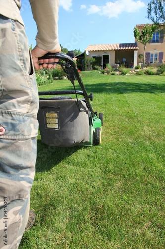 tondre la pelouse photo libre de droits sur la banque d 39 images image 14458143. Black Bedroom Furniture Sets. Home Design Ideas