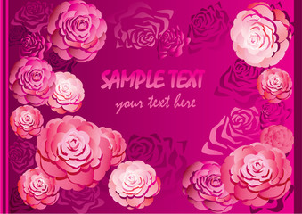 Beautiful roses over pink background