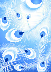 White peacock feather background