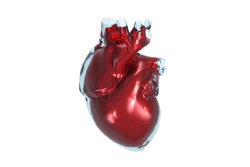 Color 3D front view of the human heart.