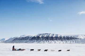 Stores à enrouleur Pôle Dog Sled Expedition