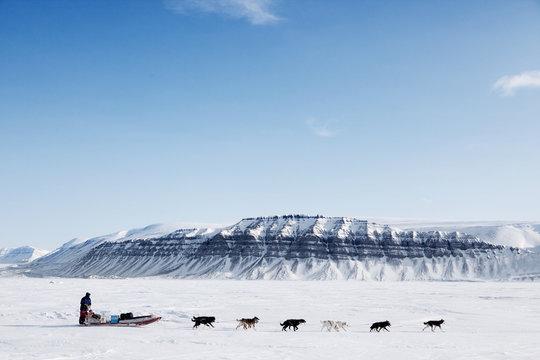 Dog Sled Expedition