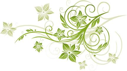 Frühling, Blume, Grüntöne