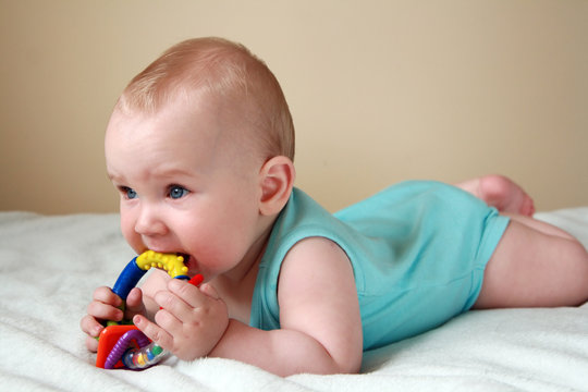 7 months old baby  playing with rattle