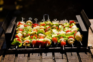 Vegetable Barbecue Shish-kebab