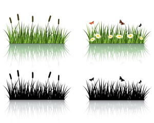 Vector Grass Set. Nature Collection.