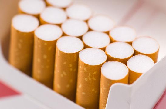 Zigaretten in Schachtel