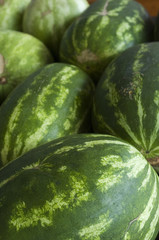 Watermelons at the Farmers Market
