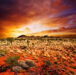 Printed kitchen splashbacks Australia Sunset Desert Beauty