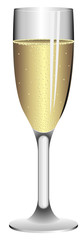 Tall wineglass filled with champagne isolated on white