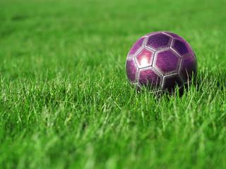 Pink Soccer Ball on Grass