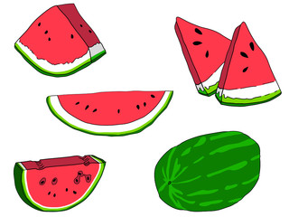Watermelon vector illustrations