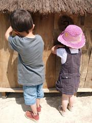 frère et soeur à la ferme