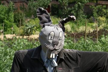 Scarecrow. rabbit head