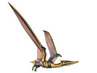 Quetzlcoatlus
