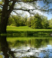 beautiful mountain valley reflection on lake surface