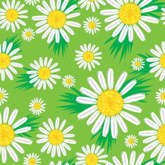 Keuken foto achterwand Lieveheersbeestjes Seamless cute floral pattern with bright chamomiles