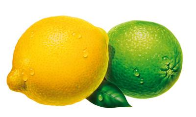 Zitrone und Limette