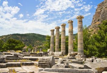 Ruins of roman temple